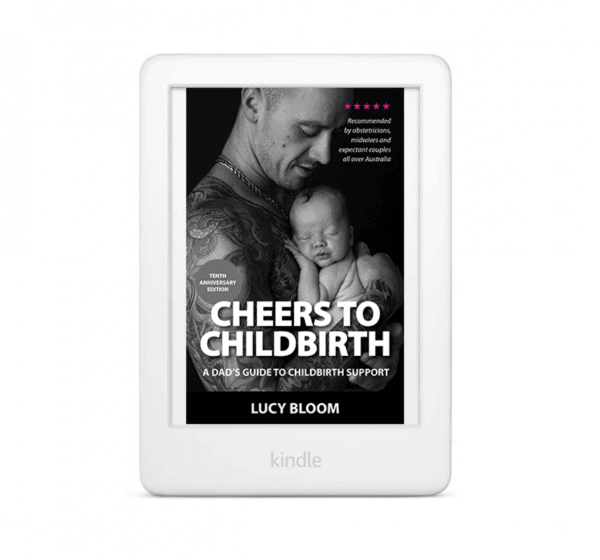 Cheers to Childbirth kindle